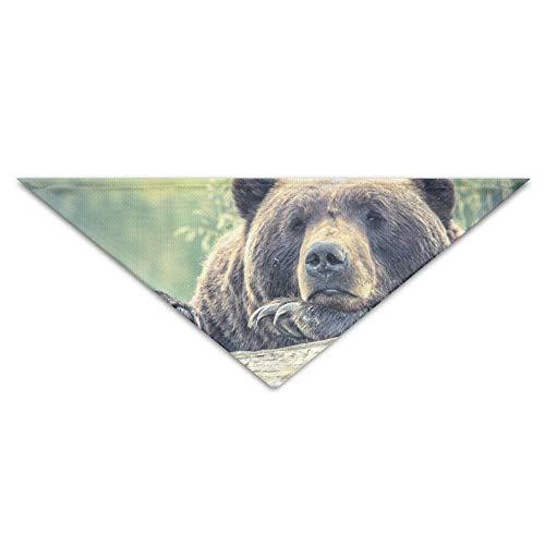 Gxdchfj Brown Bear Triangle Pet Scarf Dog Bandana Pet Collars for Dog Cat - Birthday