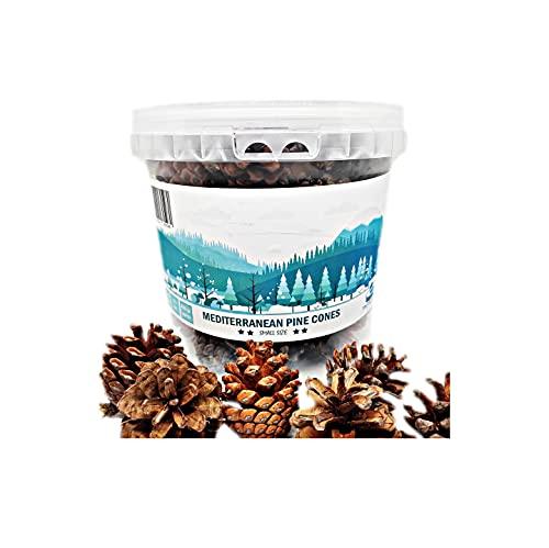 TIN DREAMS FACTORY, 50 uds, Piñas Naturales Talla pequeña, piñas Decorativas, Premium. - 450 gr Aprox. Tamaño 1-5 cm