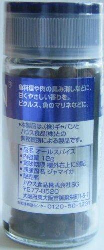 ギャバン オールスパイス 瓶1g