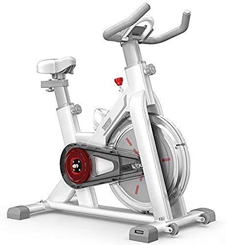 LJYY Heimtrainer |Video Events und Multiplayer App |Magnetbremse + Impulsriemen |Fitness Bike |Extra leise |Videotraining