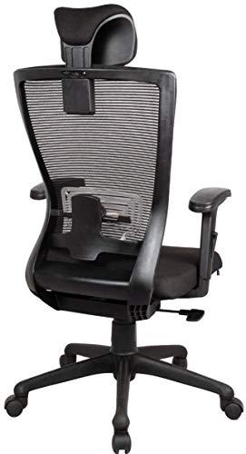 GARDENOLOGY Ergonomics High Back Revolving Office Chair   Unique 3D Armrest   Multi Position Tilt Lock   12 Months Warranty (Black)