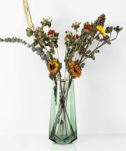 Lewondr Glasvase, 22 cm Hohe Kristall Klar Zylindervase Deko Vase Blumenvase mit Gold Linie, Dekoration für Büro Home Küche, Geschenk für Hochzeit Weihnachten Einweihung - Grün