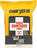 everyone (NOT A CASE) Coconut Lemon Hand Sanitizer, 30 Wipes