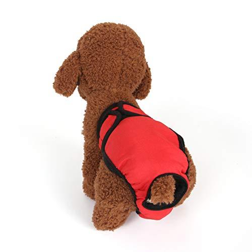 MYYXGS Pantalones FisiolóGicos para Perros Ropa Interior De Seguridad para Perros Ropa Interior Anti-Acoso De Peluche Pantalones FisiolóGicos para Perros