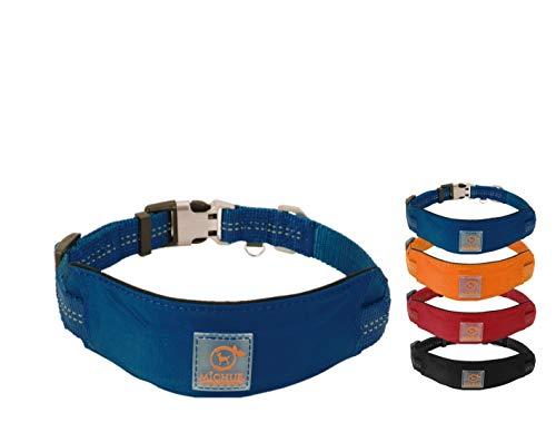 MICHUR Bruno HUNDEHALSBAND blau, Nylon Hundehalsband, Halsband für Hunde, Neon Blau, Neopren Polsterung, reflektierende Linien, verstellbar, in 3 Größen und die passende Leine erhältlich