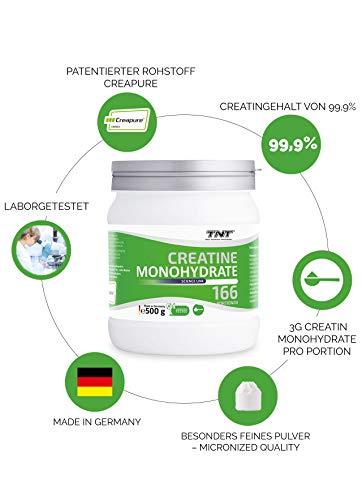 TNT Creapure® Creatine – 100% Kreatin-Monohydrat – Leistungssteigerung und Kraftschub im Training – 500g Dose - 5