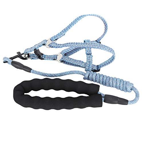 Arnés para Perros con Correa, ajustable, cómodo, suave, resistente, arnés para perros con juego de correa, diseño de estilo de chaleco ajustable, correa de arnés para mascotas a prueba de escape(S)