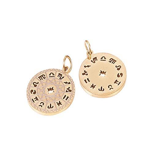 DanLingJewelry 10 colgantes de acero inoxidable 304, redondos, redondos, 12 constelaciones, signo del zodiaco, para hacer joyas