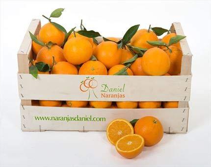 Naranjas Valencias de Mesa Caja 15 kg