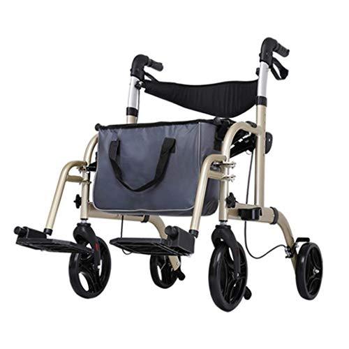 Cayin Rollator und Rollstuhl, 2 in 1 Gehhilfe, Höhenverstellbar, Korb, Sitz, Gehwagen für Senioren, Gehhilfe für Behinderte, Leichtgewicht, Fußstützen