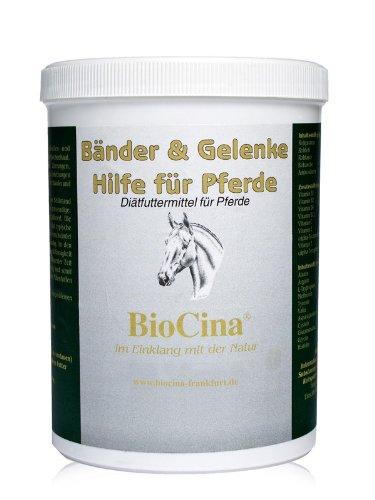 BioCina® Bandes & Poignet aide pour chevaux – des blessures ou dégénératives Signes d'usure des Ligaments et les articulations