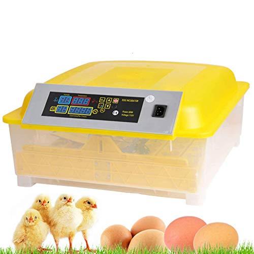 OppsDecor Egg Incubator