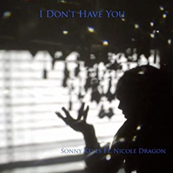 I Don't Have You (feat. Nicole Dragon)