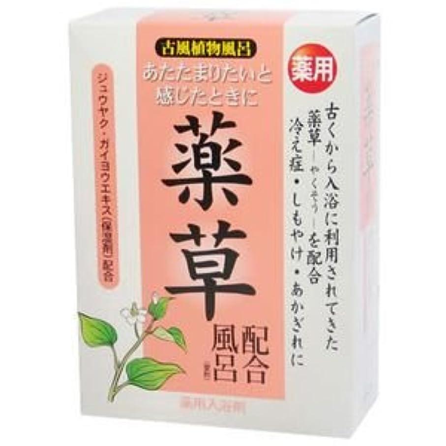 男性施設放出古風植物風呂 薬草配合風呂 25g*5包