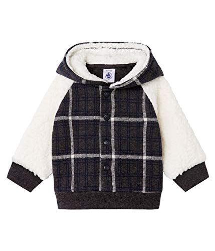 Petit Bateau Sweat Shirt A Capuche_5088701, Multicolore (City/Multico 01), 92 (Taille Fabricant: 24M/86centimeters) Bébé garçon