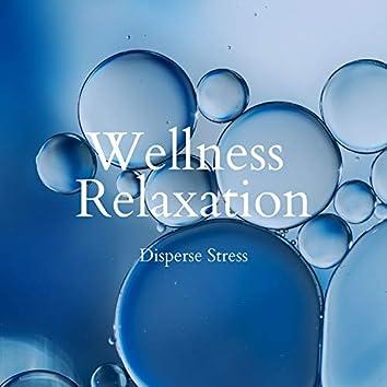 Disperse Stress - Wellness Relaxation (Instrumental Version)