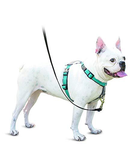 PetSafe 3 in 1 Hond Harnas en Auto Restraint, Small, Blauwgroen
