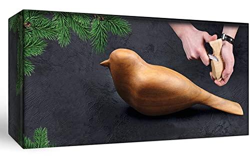 Kit complet de démarrage pour débutants adultes et adolescents - Livre amusant de sculpture sur bois - Couteau à siffler Hobby Starter Kit Comfort Bird Carving