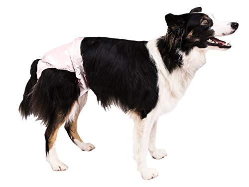 Pooch Pads PPME01PK Pink PoochPants Diaper, Medium/15 to 32 lb