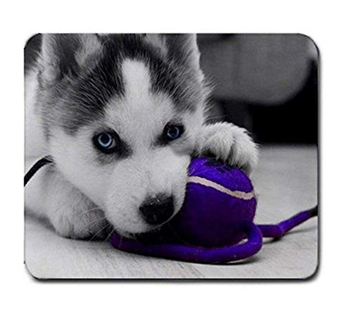 Siberian Husky Pup Playing with Purple Ball Mouse Pad 30x25 cm