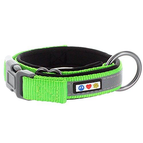 PAWTITAS Hundehalsband, reflektierend, gepolstert, breit, Größe S, 5/8 Zoll, Grün