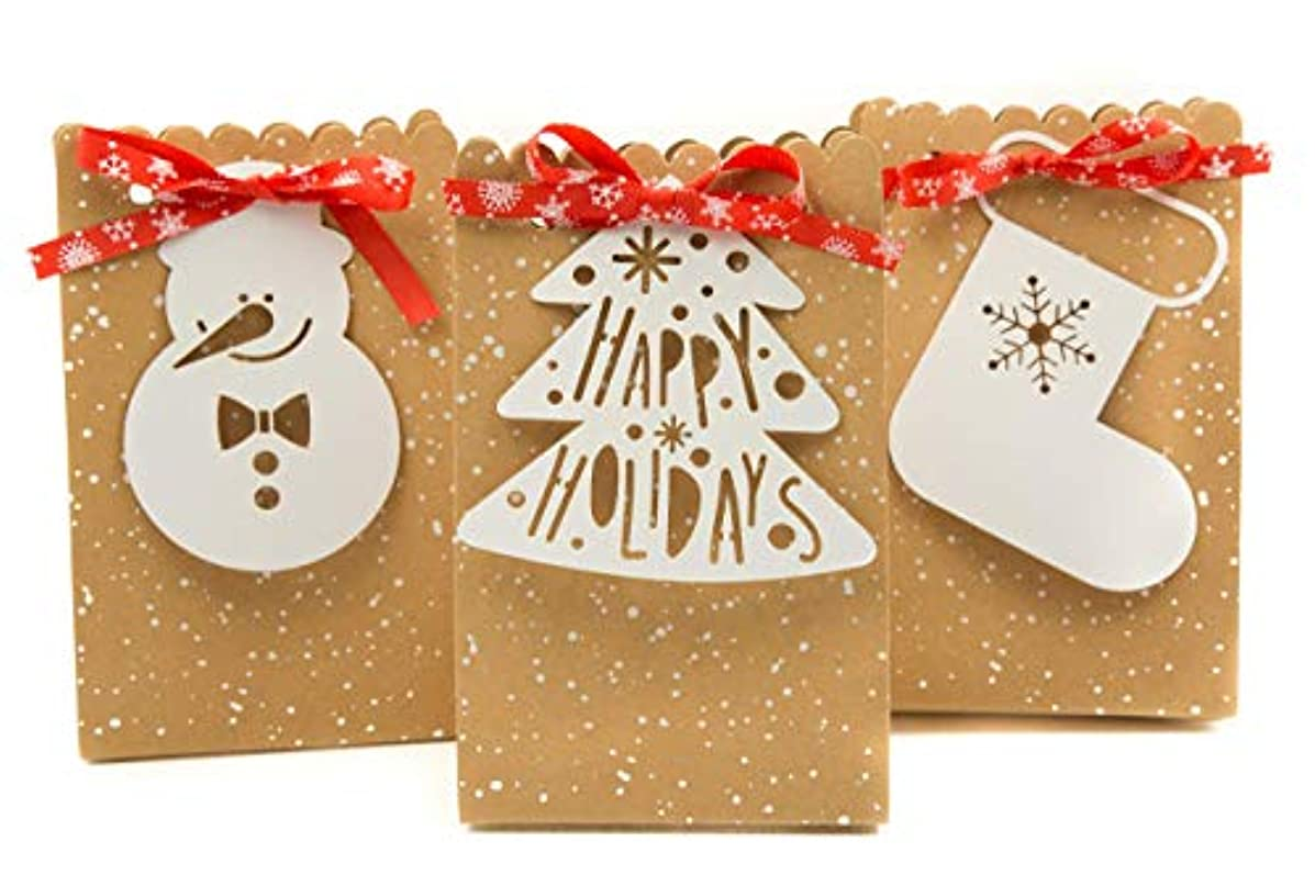 Holiday Gift Bags Small with Gift Tags and Snowflake Ribbon- 5 Pack