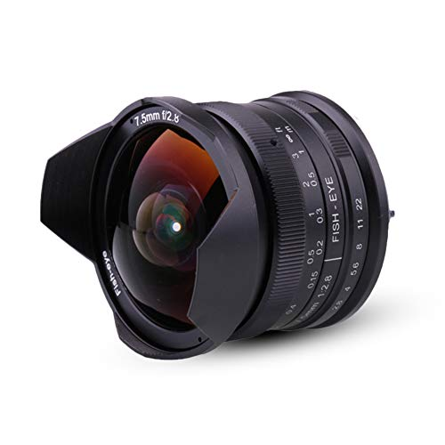 7.5mm F2.8 APS-C Fisheye Fixed Lens with Protective Lens Cap, Lens Hood and Carrying Bag Focus Lens for Sony Emount Cameras
