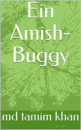 Ein Amish-Buggy