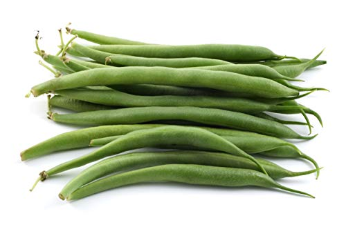 Green Bean Seeds for Planting - Provider - Bush Bean - 50 Seeds - Heirloom Non-GMO Vegetable Seeds for Planting
