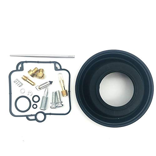 JEOSNDE Kit de reparación carburador for DR350 for Goose350 for Mikuni BST40