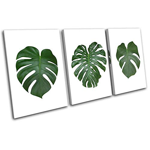 Gyybfhn Framed Print Artwork Leaves Botanical Green Monstera Floral Wall Art Decor Poster Artworks For Homes Painting On Canvas 3 Panel Canvas Prints Picture For Home Office Decor Gift 50X70x3