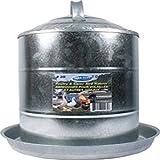 Farm Tuff 3G Double Wall Cone-Top Galvanized Poultry Fountains, 3-Gallon, Galv Steel
