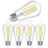 LANGREE Vintage LED Edison Bulb, 6W, Equivalent 60W, DaylightWhite 4000k, Dimmable Led Filament Light Bulb, E26 Base, High CRI 95+ Eye Protection Led Bulb, Clear Glass for Home, Pack of 5