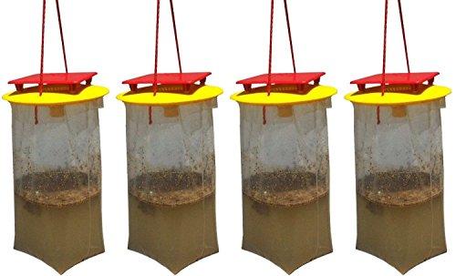 Redtop Flycatchers Taille compacte Twin Value Pack (2 Pièges Inclus) – 100% Non Toxique à Mouches extérieur jetable – Conçu pour Attirer Les Egg-Laying Femelles 2