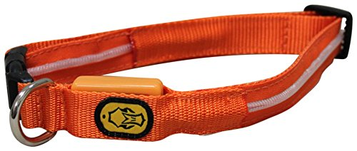 Great Features Of Hard Core Brands 04-200-0031 Small Lighted Collar, Orange