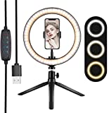 10' Ring Light, with Phone Holder Selfie Ring Light, 3 Lighting Modes and 10 Brightness Levels, for Live Streaming, YouTube, Makeup, Video Shooting, Vlog, Selfie (Remote Control for iPhone Android)