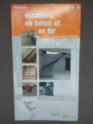 Escaliers en béton et en fer