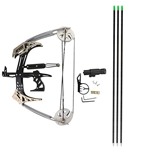 NMCPY Archery Mini Compound Bow and Arrows Set 25lbs Hunting Bows for Adult Youth Shooting Fishing (Silver)