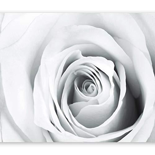 murando Papier peint intissé 400x280 cm Décoration Murale XXL Poster Tableaux Muraux Tapisserie Photo Trompe l'oeil Rose fleurs b-B-0035-a-d