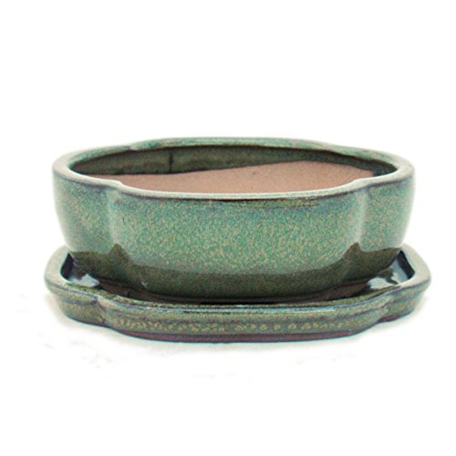 exotenherz - Bonsai-Schale mit Unterteller Gr. 2 - Olive-Braun - haitang/oval - Modell I5 - L 14,5cm - B 12,5cm - H 5cm