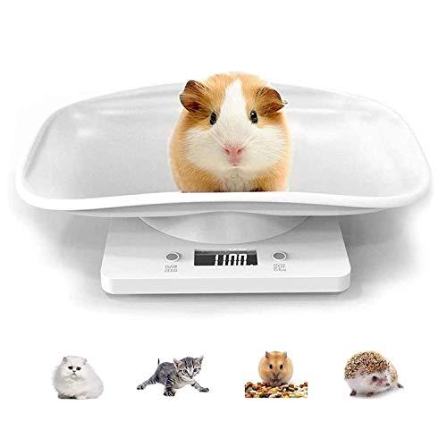 Guangyu Balance Numérique pour Petit Animaux avec écran LCD, 4 Modes de Pondération,pour Animaux Chats Chiens Cochon d'Inde Hamster et La Cuisine Mesurant,Capacité Jusqu'à 10kg/22lb