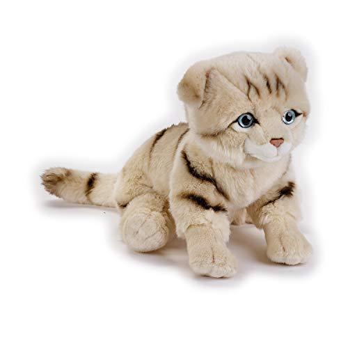 Venturelli - Peluche Scottish Fold Cat Ngs Peluches Gatos, Multicolor, 26 cm, 8004332706731