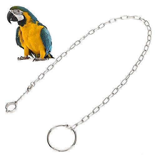 Catene per Piedi per Uccelli Accessori per Anelli per Caviglie in Acciaio Inossidabile Guinzaglio per pappagalli Pappagalli da Esterno Corda per addestramento al Volo Impedisci la Fuga