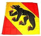 Fahne / Flagge Schweiz - Kanton Bern NEU 90 x 90 cm