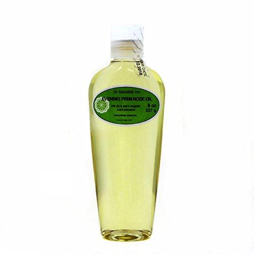 Evening Primrose Carrier aceite orgánico puro prensado en frío por Dr. Adorable 8oz