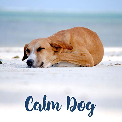 Calm Dog – Piano Classical Music for Dogs, Cats, Puppies, Anti Anxiety, Stress Relief, Flute, Saxophone, Relaxing Songs for Sleep