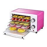 ZNBJJWCP 5 bandejas de Comida deshidratador de Frutas Vegetal, Hierba, Carne de Secado de la máquina del hogar Mini...