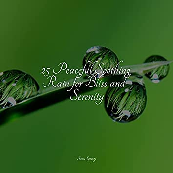 25 Peaceful Soothing Rain for Bliss and Serenity