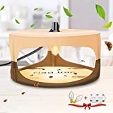 Burxoe Flea Trap, Sticky Dome Bed Bug Trap Insects with 2 Glue Discs, Indoor Pest Control Trapper Natural Insect Killer Pad for Bugs Fleas, Non-Toxic Odorless Safe for Home Inside, Family, Pet