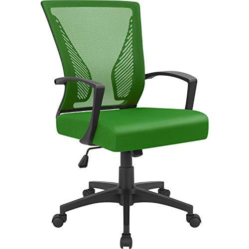 Furmax Office Chair Mid Back Swivel Lumbar Support Desk Chair, Computer Ergonomic Mesh Chair with Armrest (Green)
